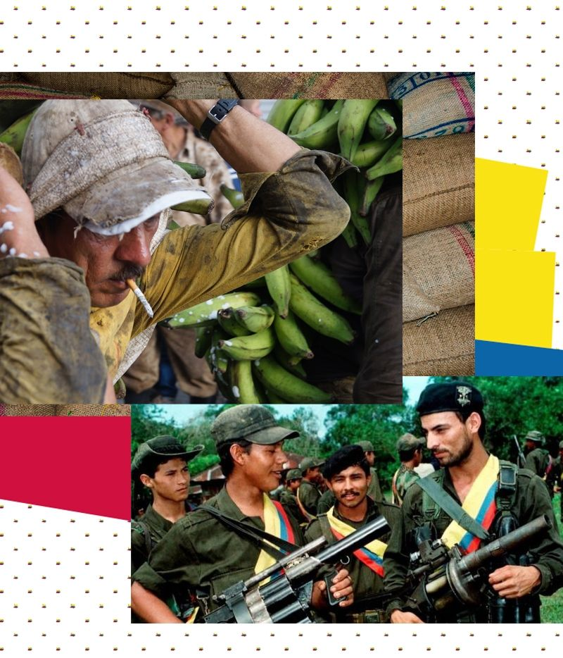 FARC Coffee Farmers